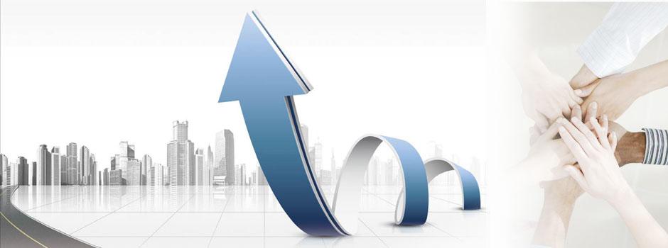 1993年 1幢旧民居,2位工人,3位销售员形成了原始雏形。 1995年 员工超百,产值超千万。 1998年 组建石业公司,研发生产超薄石材复合板,开创石材业新高端领域。 2001年 成立外贸中心,转向外贸型企业。 2002年 福建泉州万龙石业有限公司通过ISO9001:2000质量管理体系认证。 2003年 成为行业内代表性地位的公司。 2005年 并购兢业机械有限公司,更名为福建省泉州万龙机械制造有限公司,实现相关产业集团化运作,集团公司应运而生。 2006年 受邀参加法国国际发明博览会。 2007